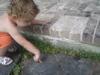 Froggiehere